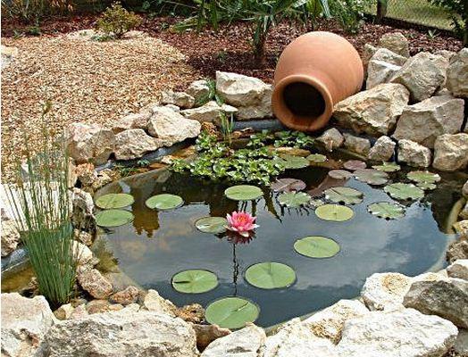 Accessoire pour bassin poisson materiel de bassins Accessoires pour bassin de jardin