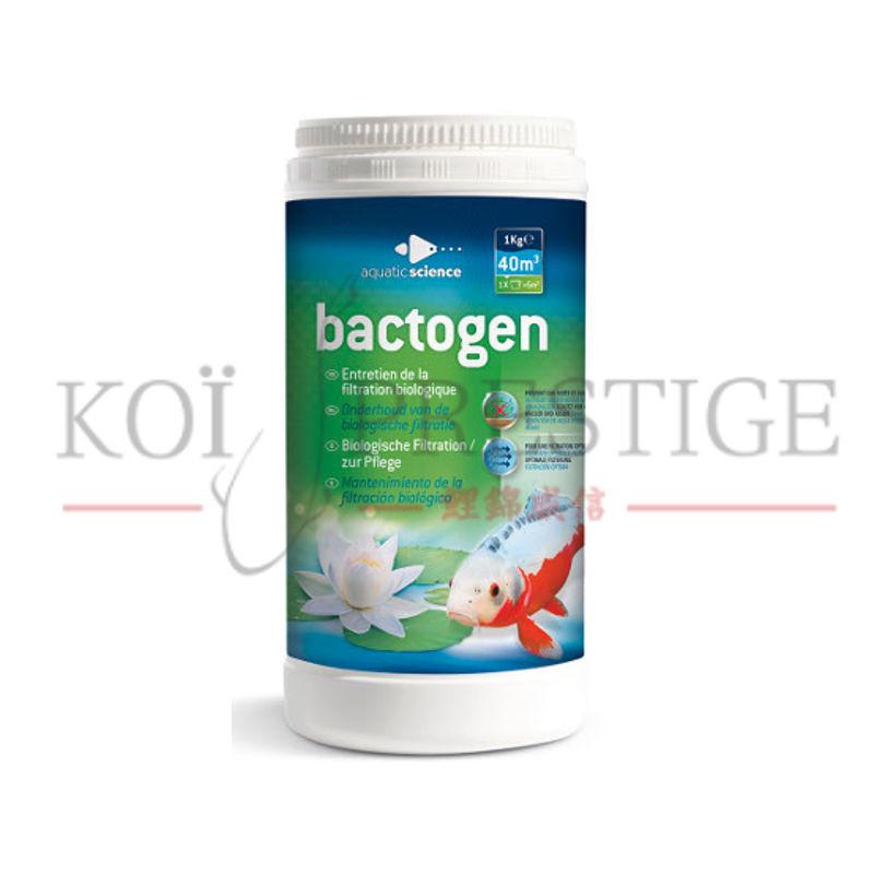bacteries pour bassin jardin