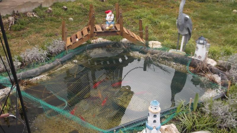 bassin de jardin preforme 1000 litres