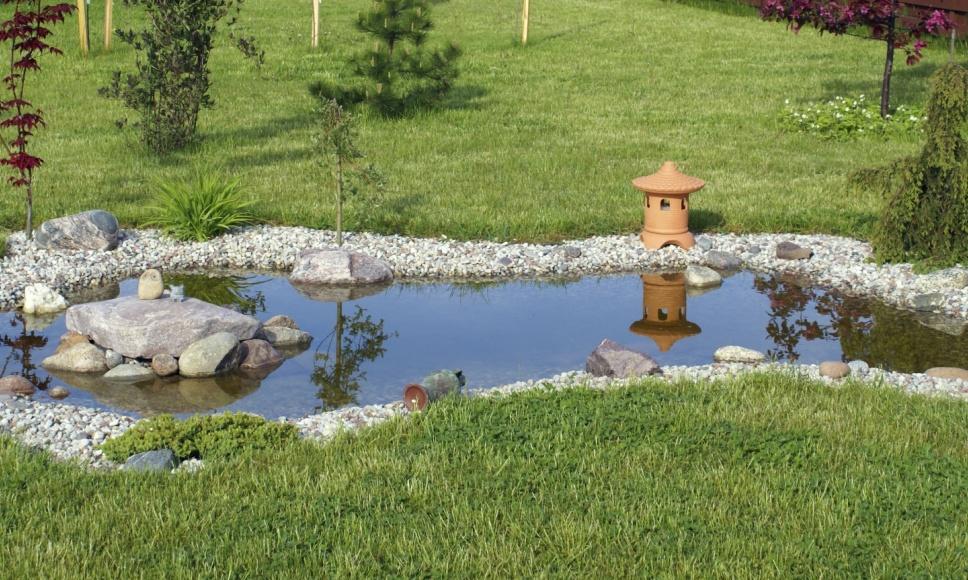 bassin ornement poisson