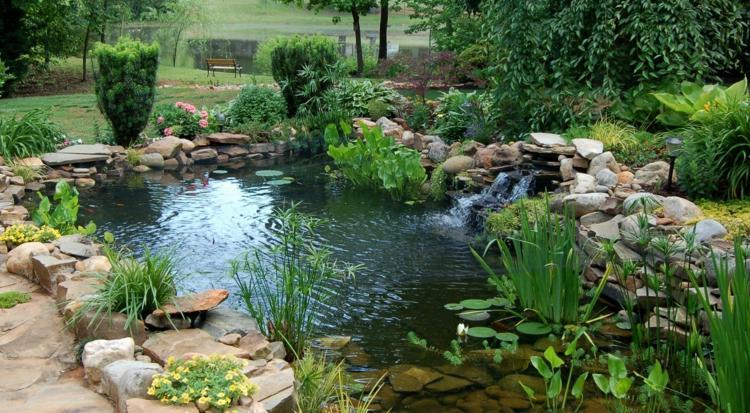 bassins aquatiques jardin