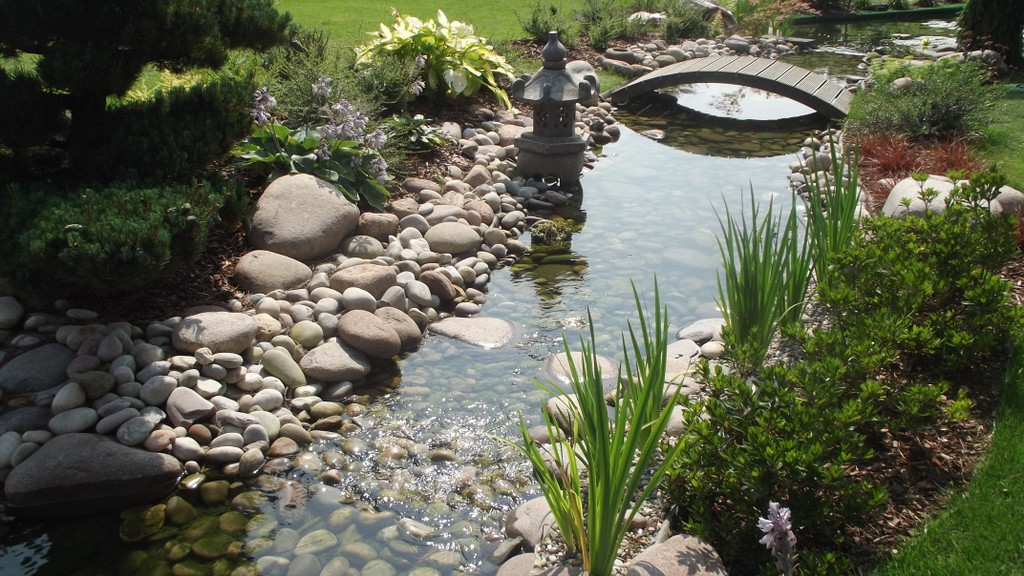 bassins et jardins aquatiques