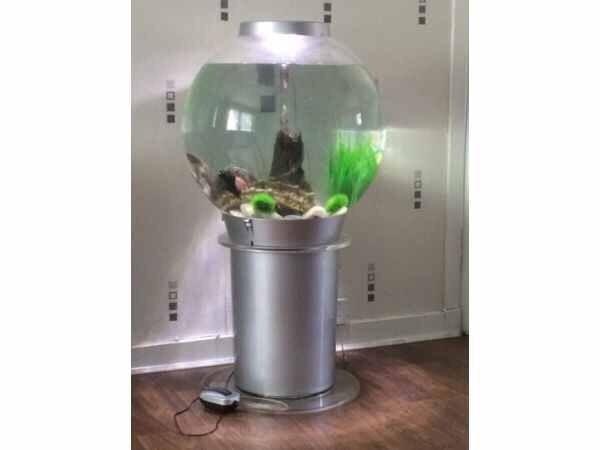 biorb 105 liter
