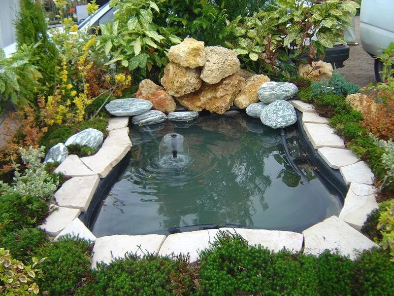 creation piece d\'eau - Materiel de bassins