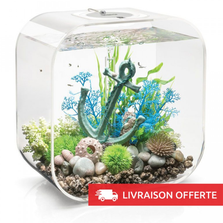 decoration aquarium biorb