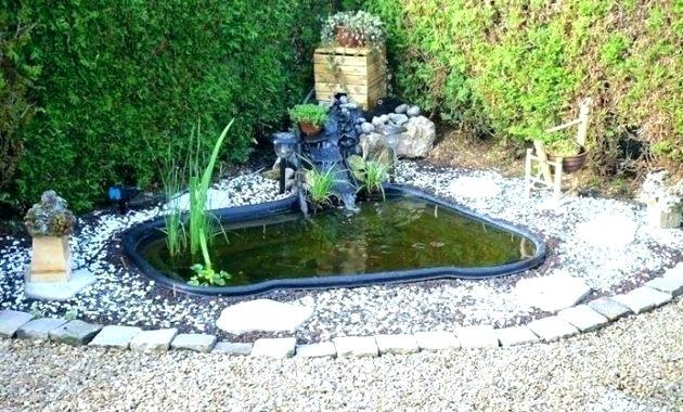 decoration bassin poisson - Materiel de bassins