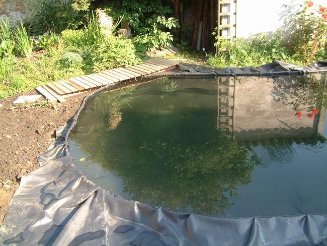 ecolat bassin