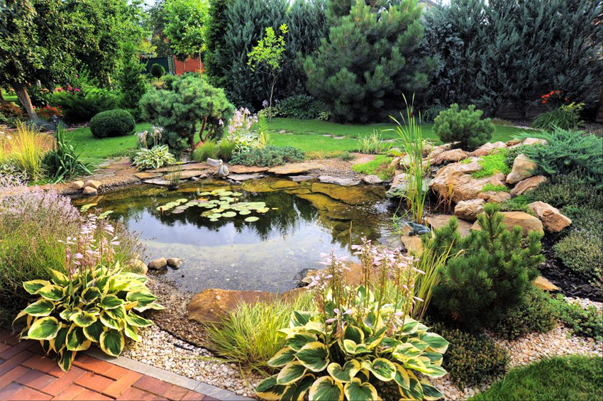 equipement bassin de jardin - Materiel de bassins