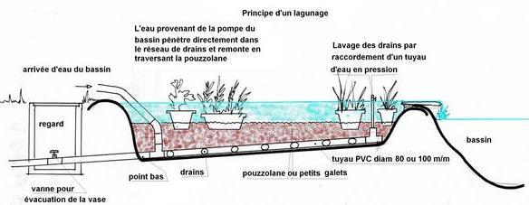 Faire Un Filtre Pour Etang Materiel De Bassins