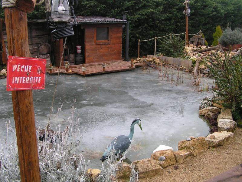 hivernage bassin koi