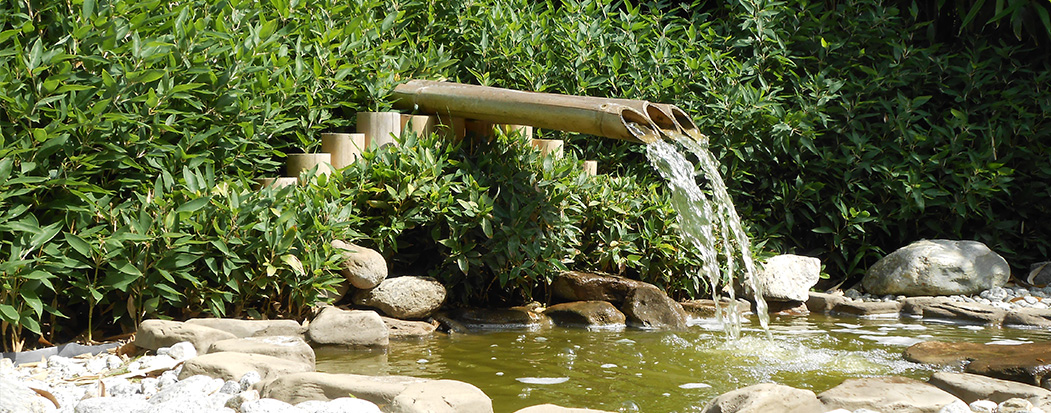 jardin aquatique ain