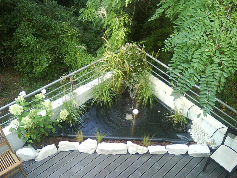 jardin aquatique bassin