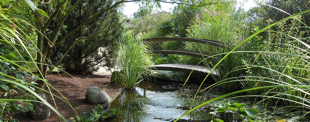 jardin aquatique chatillon sur chalaronne
