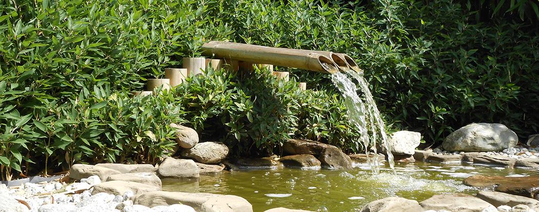jardins aquatiques 01