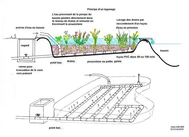 lagune pour bassin de jardin