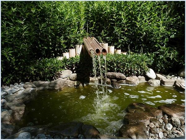 les jardins aquatiques saint didier sur chalaronne