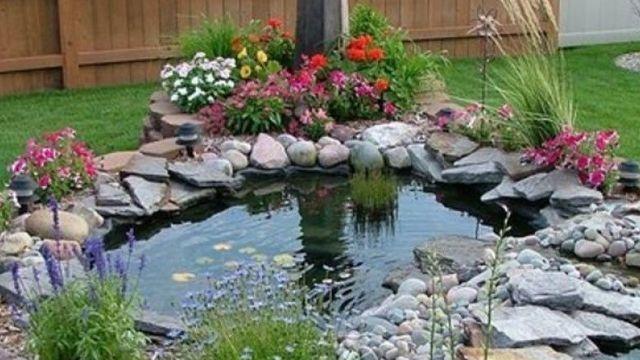 magasin de bassin de jardin