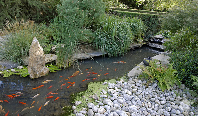 materiel de bassin exterieur - Materiel de bassins