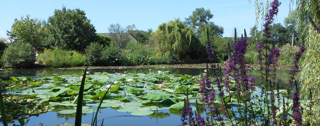parc aquatique saint didier sur chalaronne