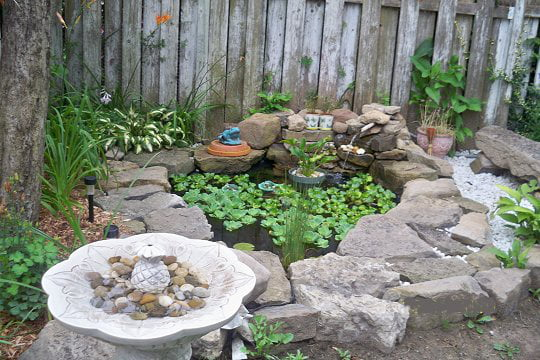 pierres de lave pour bassin