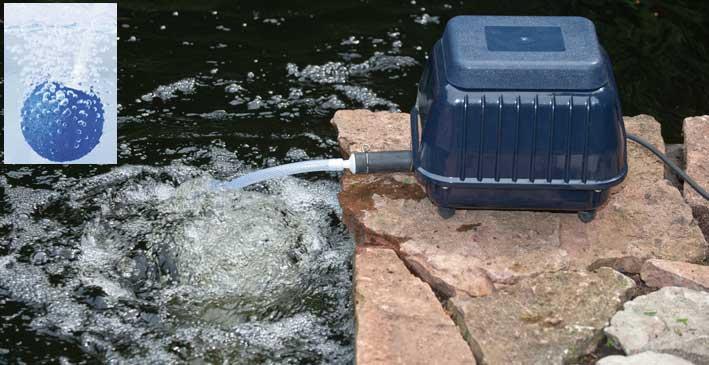 pompe a bassin exterieur