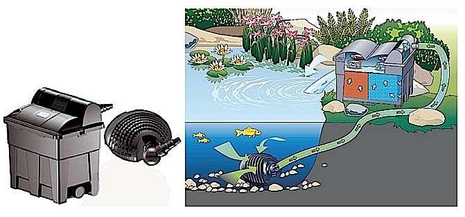 pompe filtration bassin