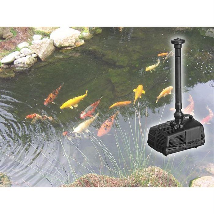 pompe pour bassin exterieur poisson