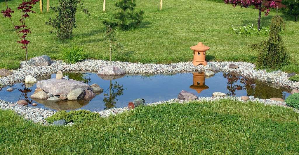 pvc pour bassin