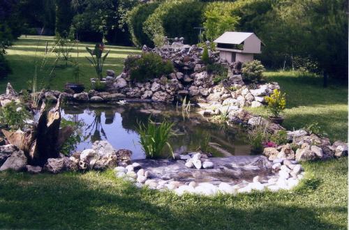 uv bassin de jardin